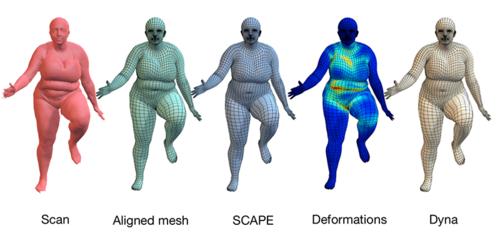 Dyna: 4D meshes of dynamic human soft tissue motion