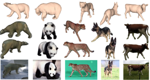 SMALR: Capturing Animal Shape and Texture from Images