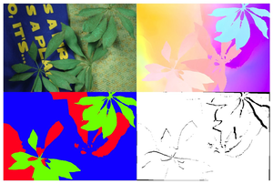 Layered image motion with explicit occlusions, temporal consistency, and depth ordering