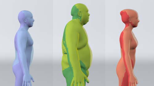Breathing Life into Shape: Capturing, Modeling and Animating {3D} Human Breathing