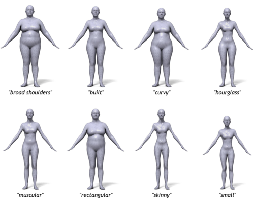 BodyTalk: Tool that relates 3D body shape to words