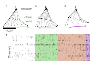 A framework for relating neural activity to freely moving behavior
