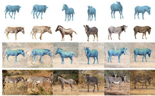 "Three-D Safari: Learning to Estimate Zebra Pose, Shape, and Texture from Images ""In the Wild"""